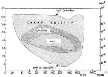 Champ auditif