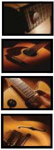 Les guitares de Sampletank de Sample Tank 2