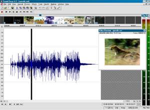 Snapshot des fonctions video de Sound Forge